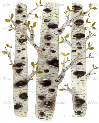 Birch Trees - Woodland Collection