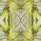 Rrpencilled_plant_shop_thumb