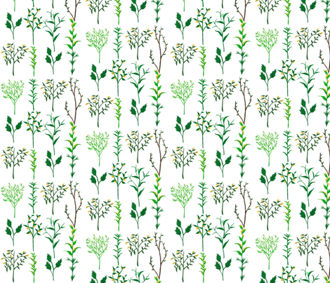 Herb Garden fabric by frumafar on Spoonflower - custom fabric