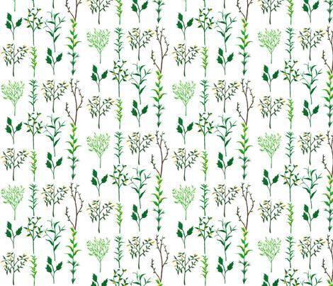 Herb Garden fabric by frumafar on Spoonflower - custom fabric