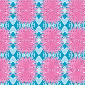 Pink Dandilions