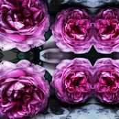 Marbled Roses I
