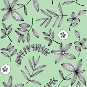 Botanical Drawn - mint