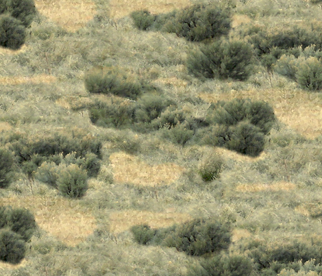 Impressions of Sagebrush fabric by evenspor on Spoonflower - custom fabric
