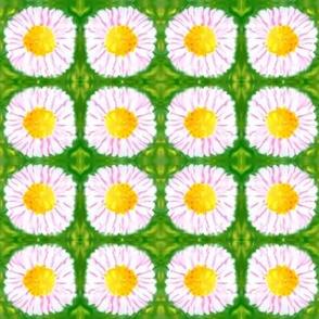 naive daisy dots