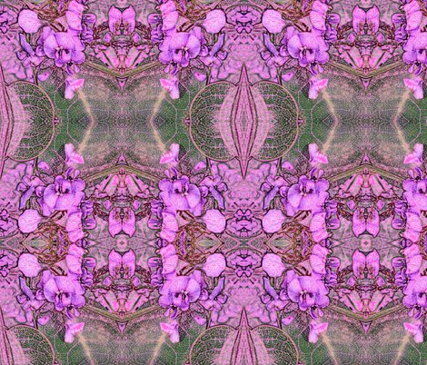 Rrrhardenbergia_pink_shop_preview