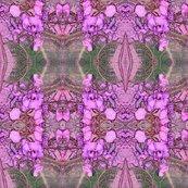 Rrrhardenbergia_pink_shop_thumb