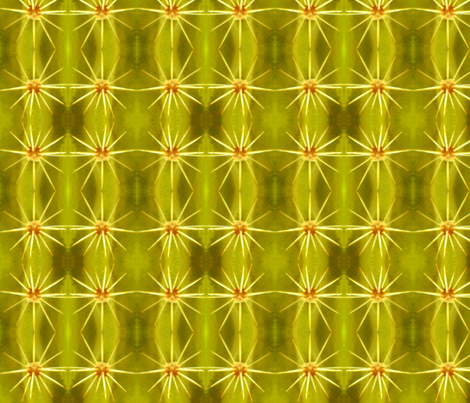 cactus fabric by jmc on Spoonflower - custom fabric