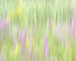 Rfield_of_grass_copy_thumb