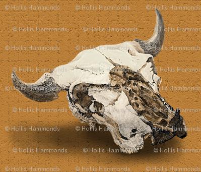 animal_skull