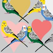 R2830281_rlove-budgies5_shop_thumb