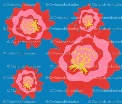 cactus_blooms_blue_bg