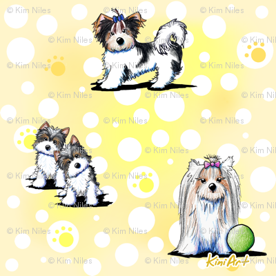 LG Biewer Yorkie Terriers on Yellow
