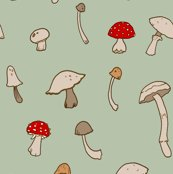 Rrshrooms_copy_shop_thumb