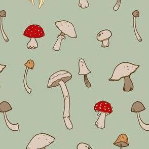 Shrooms 2