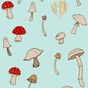Rshrooms_copy2_shop_thumb
