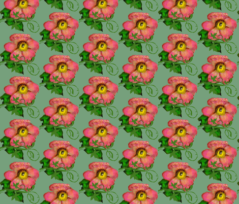 Wild Rose fabric by paragonstudios on Spoonflower - custom fabric