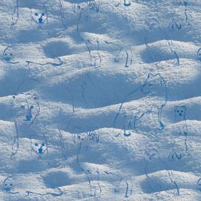 Snow Camouflage