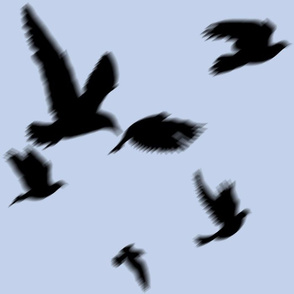 flying_birds_mist