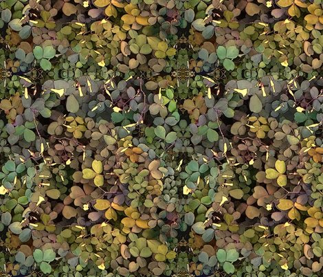 Rrshamrock_camouflage_shop_preview