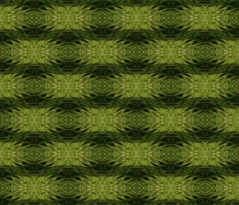 Rnatures_camouflage-3x6_shop_preview