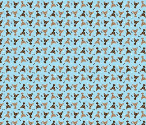 blue_chihuahuas fabric by feralfantasies on Spoonflower - custom fabric