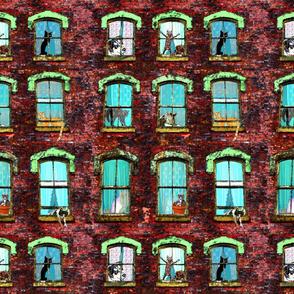 Windows w...