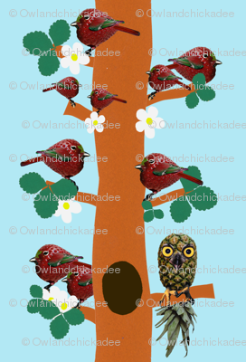 Straw-Birdies and Pineapp-owl   Small print version