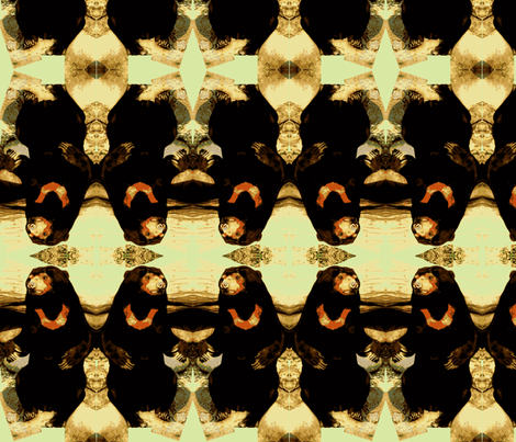 Sun Bear fabric by robin_rice on Spoonflower - custom fabric