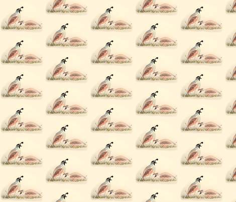 I-Spy quail fabric by kaeledra on Spoonflower - custom fabric