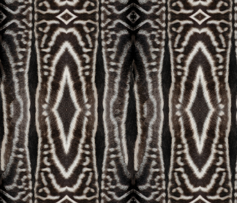 Zebra fur fabric by hannafate on Spoonflower - custom fabric