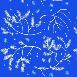blue winter branches