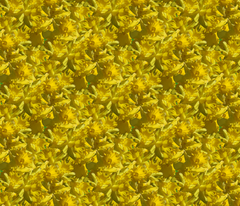 Daffodill delerium fabric by hannafate on Spoonflower - custom fabric