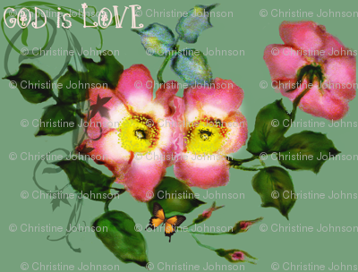 Wild Roses God is Love