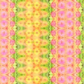 Rrb_zinnia_border_6300x1024_picnik_collage_shop_thumb