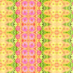 edit_c_zinnia_border_6300x300_Picnik_collage