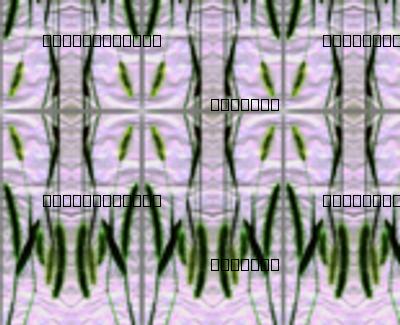 Elegant Grasses