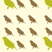 Rrgreen_and_brown_birds_shop_thumb