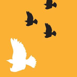 orange_background_with_black_and_white_birds