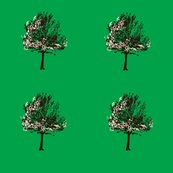 Rtree_on_green_shop_thumb