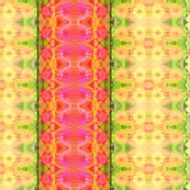Rd_zinnia_border_6300x300_picnik_collage_shop_thumb