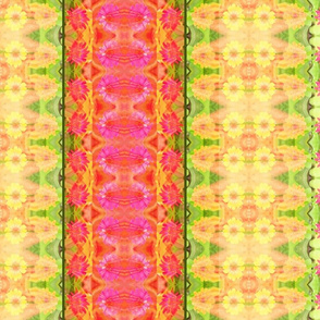 D_zinnia_border_6300x300_Picnik_collage