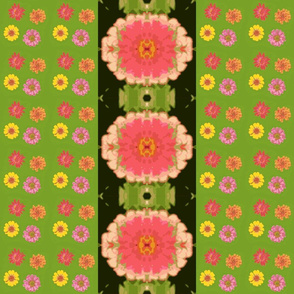 zinnias_and_mirrored_zinnia_black_border_Picnik_collage