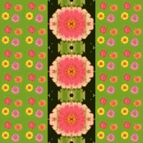 zinnias_and_mirrored_zinnia_black_border_Picnik_collage