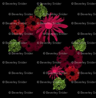 Red_Wine_Flowers_on_Black