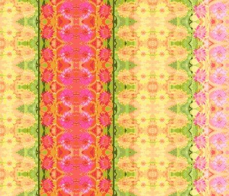 Rrd_zinnia_border_6300x300_picnik_collage_shop_preview