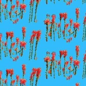 Dancing Red Flowers