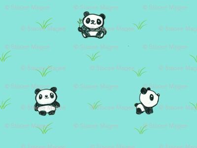 panda-fun-ch