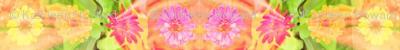 crop_for_swatch_edit_c_zinnia_border_6300x300_Picnik_collage