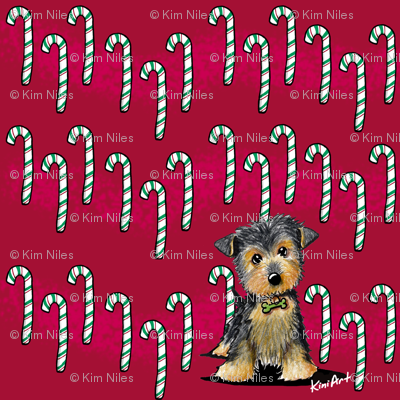 Small Yorkie Boy on Red Candycanes